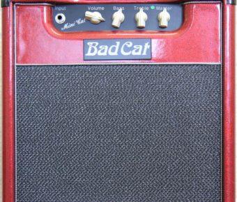 Bad Cat Mini cat